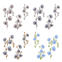 Big set of flax (Linum) plants: black contour of flowers (white, blue), bud, stems, leaves on white background. Botanical illustration for design, hand draw in engraving vintage style, etching, vector