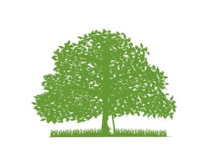 Oak and farm industry