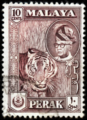 Malaya Tiger Stamp