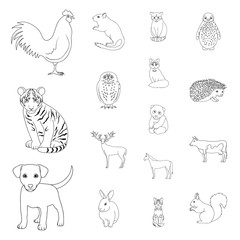 Realistic animals outline icons in set collection for design. Wild and domestic animals vector symbol stock web illustration.