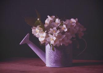 жасмин цветок свежий лежит на столе