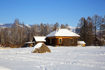 A typical wooden house in russian village Zamulta in winter in Uimon Valley, Altai mountains.