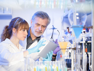 Scientists researching in scientific laboratory. Young female scientist and her senior male supervisor looking at the cell colony grown in the petri dish in the life science research laboratory.
