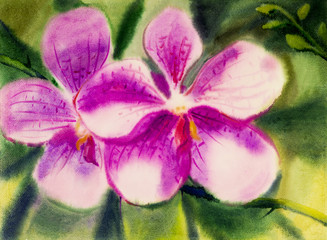 Abstract watercolor painting on paper of orchid flower.