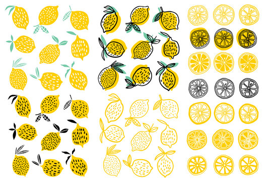Lemon vector illustration