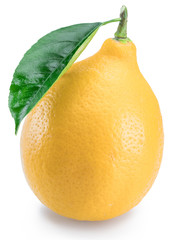 Ripe lemon fruit with lemon leaf on white background.