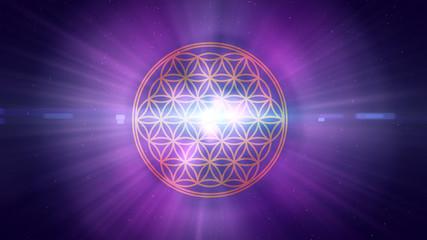 Blume des Lebens - cosmic light