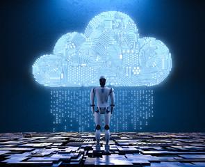 robot with circuit cloud