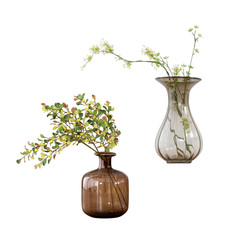 pretty branch of a glass vase. isolated white background