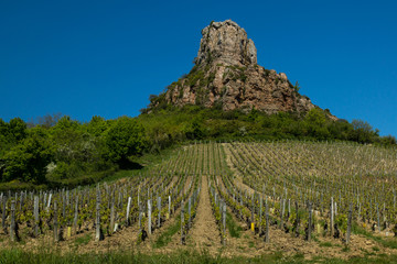 Mount Solutre in Macon wineyard area during the summer day.