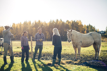 Multi-ethnic male and female farmers talking by horse at organic farm
