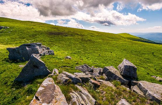 grassy slopes with huge rocks. beautiful mountainous landscape in summertime. location mountain Runa, TransCarpathian region of Ukraine