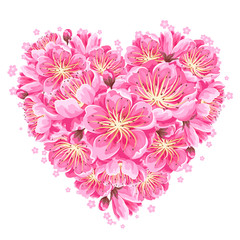 Heart background with sakura or cherry blossom. Floral japanese ornament of blooming flowers