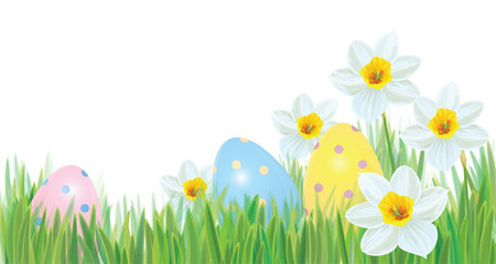 Vector Easter Eggs In Grass And Daffodils Isolated Border Background