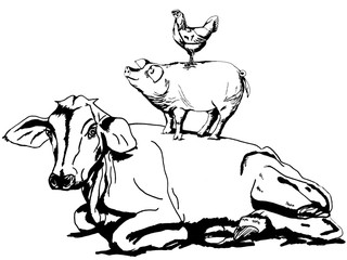 Cow pig & chicken. Line drawing of animals standing on top of each other.