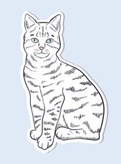 Hand drawn cat sticker