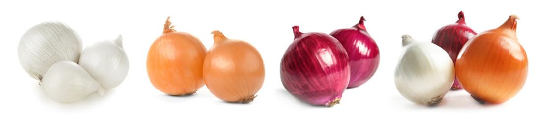 Fototapeta Ripe onions on white background obraz