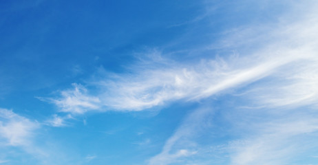 Wall Mural - white fluffy clouds