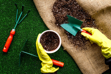 Plant flowers for garden. Tools spade, fork, hand cultivator, hoe and pot with soil on canvas and green garss background top view