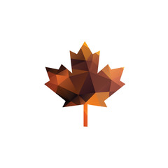 Canadian Leaf Logo Icon