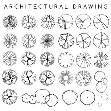 Set of Architectural Hand Drawn Trees : Vector Illustration