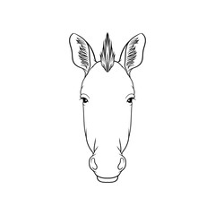 Sketch of zebras head, portrait of forest animal black and white hand drawn vector Illustration