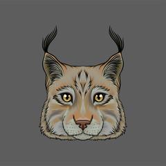 Head of lynx, portrait of wild serval cat animal hand drawn vector Illustration
