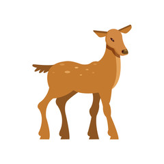 Graceful spotted fallow roe deer, wild animal cartoon vector Illustration
