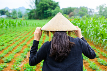 Asian woman wearing conical hat walking in the field