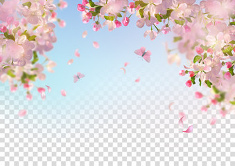 Spring Cherry Blossom Wall mural
