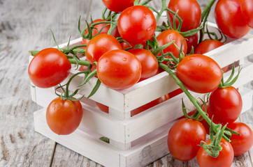 Red cigliegini tomatoes