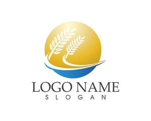 Wheat , rice agriculture logo design