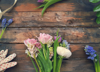 Ranunculus, tulip, geotsint flowers on wooden background