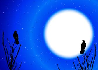 Night Winter Background