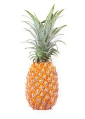 Pineapple fruit ripe on white