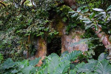 Poster de jardin Parc Naturel Abandoned House in Seychelles Jungles