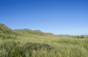 Laesoe / Denmark: View over the wide Danzigmann dune landscape at the northeastern tip of the island