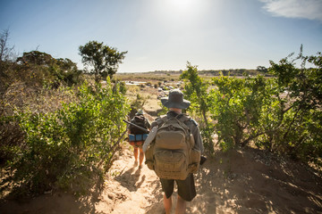 Trackers in South Africa. Game Rangers in South Africa walking through the bush with rifles.