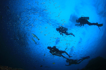 Scuba divers on underwater reef with fish