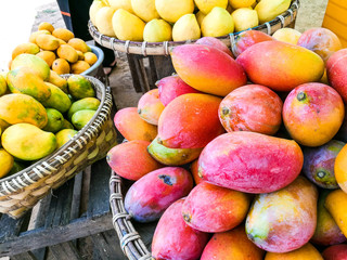 Colorful and tasty fresh mangoes sell along streets in Myanmar.
