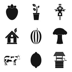 Beneficial food icons set, simple style