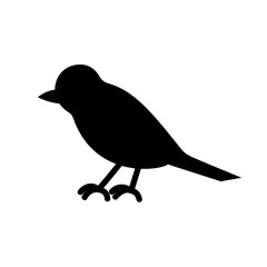The bird is black and white. Silhouette of magpies, crows, crow or raven, object on white background, isolated, simple, stylized