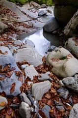 Stein mit Wasser im Herbst