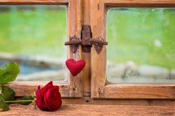Rote Rose und Herz vor einem Fenster