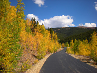 Mineral Belt Trail at 10,000 feet in the Fall, Leadville, CO