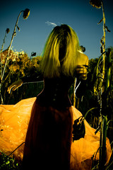 Young Woman Standing In Field Of Withered Sunflowers