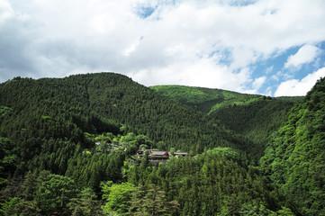 Okutama Japanese National Park