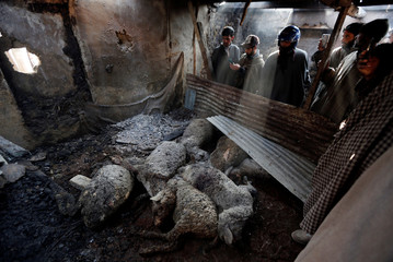 People take photographs of dead sheep inside a shed after, according to local residents, it was damaged in a gunbattle between suspected militants and Indian security forces on Wednesday evening, in Chaigund village in south Kashmir's Shopian