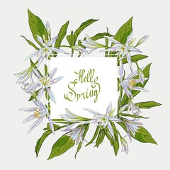 Flowers Lilies square frame, hello spring
