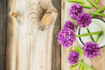 Closeup of flowering chives with shallow depth of field and focus concentrated on flower in the foreground